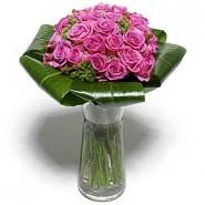 Rosa lilas